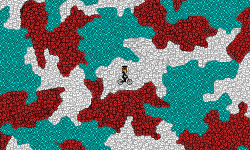 the camouflage
