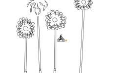 freworks