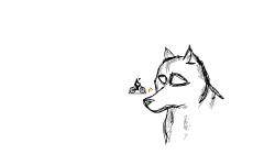 Art | Wolf