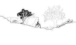 Nature (desc)