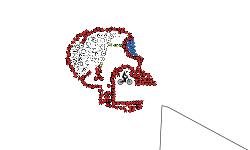 skulltrack