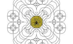 1800 Stars + Design