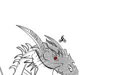 Dragon Cranium