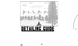 Detailing Guide