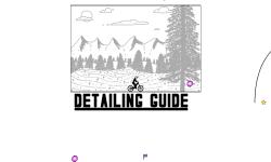 Detailing Guide