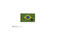 BRAZIL (auto) 🇧🇷