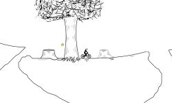 20M Trees