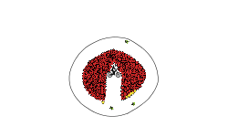 Bomb Circle