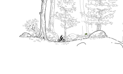 Woods 2