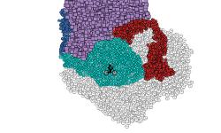 Colorful Camo (Preview)