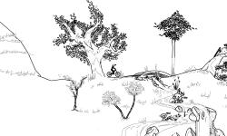 Doge Land [RCC]