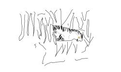 Short Cave
