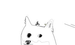 Dogeicorn