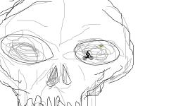 skull of dead